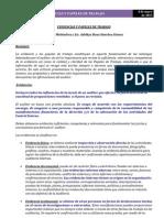 2.- EVIDENCIAS Y PAPELES DE TRABAJO.docx