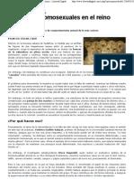 Relaciones Homosexuales en El Reino Animal - Imprimir - Libertad Digital