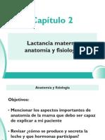 02 - 2_Lactancia Materna Anatomia y Fisiologia