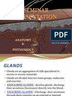 Sweat Glands Anatomy and Physiology