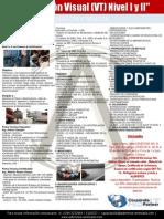Brochure Inspección Visual 2013