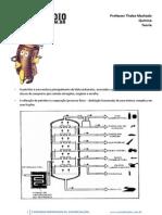 apostila hidrocarbonetos.pdf