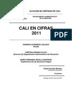 Estadisticas Vitales Cali (2007-2010)