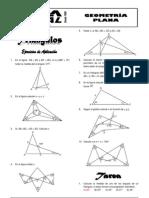 29947252-Triangulos