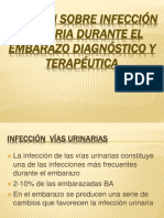 Revision Sobre Infeccion Urinaria Embarazo 1