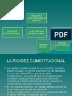 PRINCIPIOS CONSTITUCIONALES-CONSTITUCIONAL 2