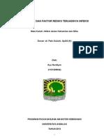 Mekanisme Dan Faktor Resiko Terjadinya Infeksi (Infeksi dalam Kehamilan)