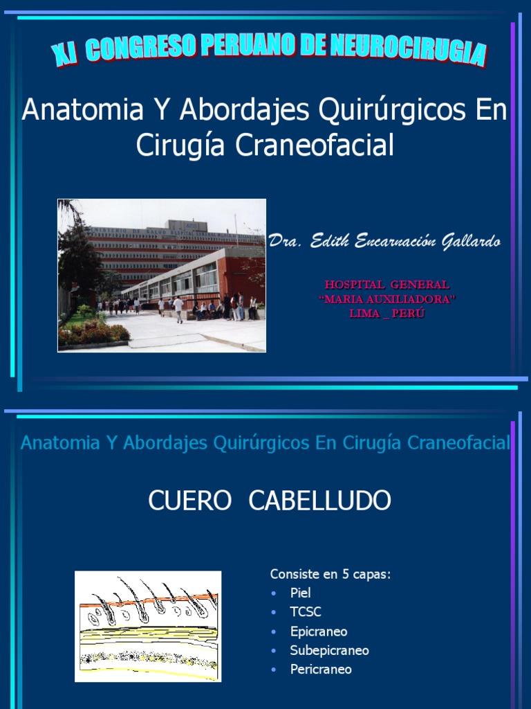 anatomiayabordajesquirrgicosencirugacraneofacial-090409194900-phpapp02