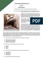 Texto Para Trabajar Comprensión Lectora - 2.docx