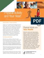 Phy Active Brief