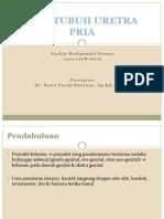 CSS Duh Tubuh Pria.pptx