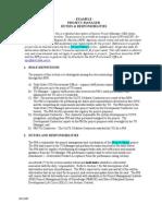 Example DutResponsibilProjMgr