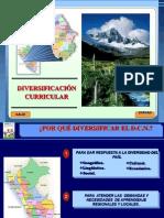 diversicación curricular-PRONAFCAP.