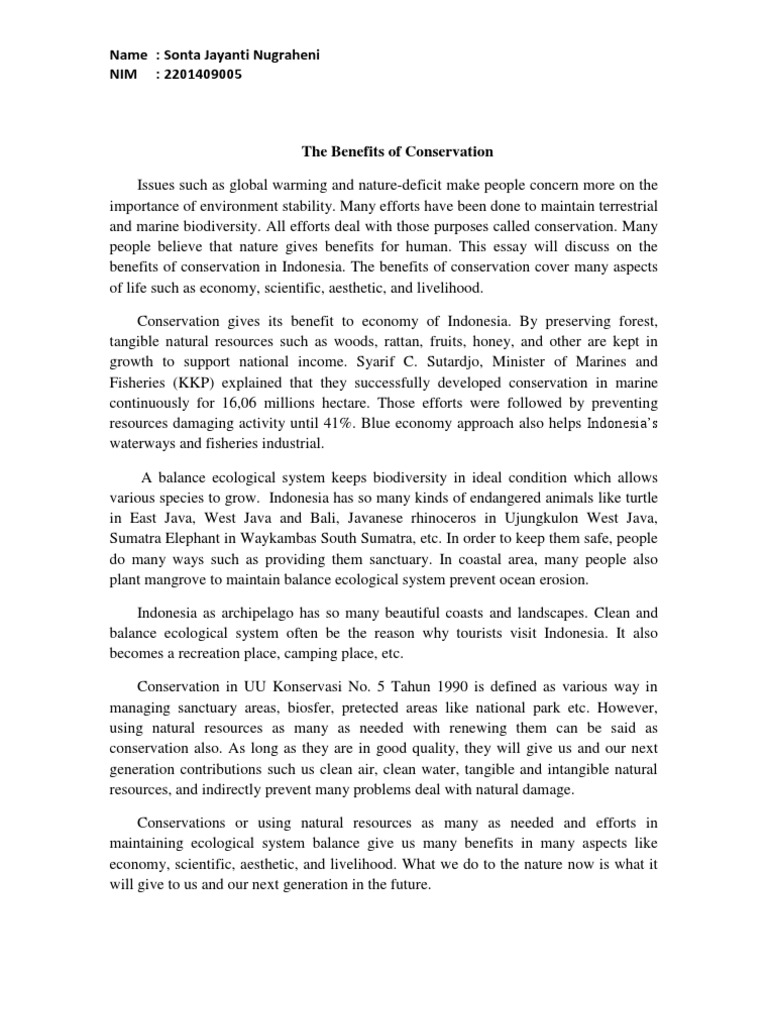 essay on importance of conservation of natural resources 91 121 essay on natural resources