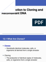 Cloning and Recombinant Dna