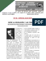 CONCIENCIAS LIBRES Nº 30 ESPECIAL JULIO 2013.-