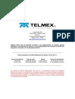 Reporte Anual TELINT Ejercicio Social 2011