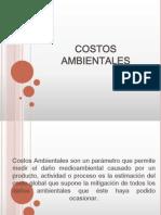 COSTOS AMBIENTALES