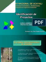 09_Modulo I - Identificación de Proyectos