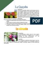 Características Y PROPIEDADES DE FRUTAS