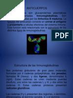 Anticuerpos y Leucemias