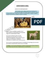 Apuntes Para Ver Sobre Comportamiento Animal