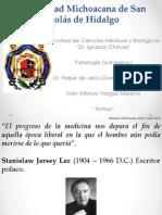 Vargas Moreno Ivan Alfonso - Antrax