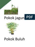 tajuk 2 - pokok