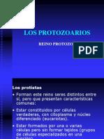 losprotozoarios-100501104520-phpapp01
