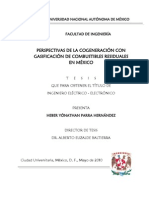 PERSPECTIVAS DE LA COGENERACIÓN CON GASIFICACIÓN DE COMBUSTIBLES RESIDUALES EN MÉXICO