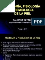 1-Anatomia Fisiologia y Semiologia de La Piel