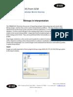 SCM Bitmaps in Interpretation Petrel 2010