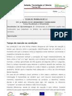 RA3_Ficha de Trabalho13- STC6