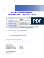 Informe Diario Onemi Magallanes 08.07.2013