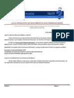 Erp-ciclo Operativo de Documentos Electronicos (Dte)_iw