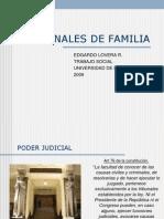 tribunalesdefamilia2010-100715151240-phpapp02