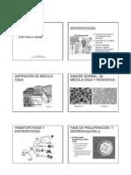 eritropo.pdf