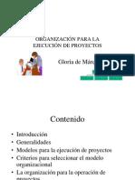 Org Para Proyectos Tecnicos