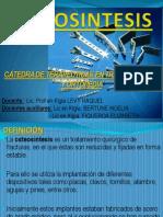 osteosintesis-090822135256-phpapp01