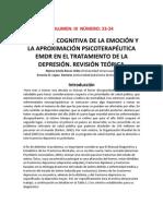 Cien Cognit Vol23 24 PDF