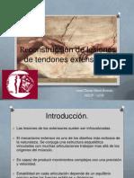 reconstrucciondelesionesdetendonesextensores-120115220501-phpapp01