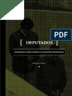 Imputados Ale RAMM Et Al ICSO UDP