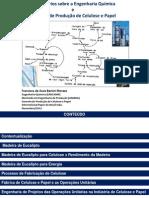 celulosepapelengquimica-121027082230-phpapp02