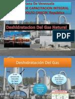 Deshidratación_Del_Gas[1].pptx