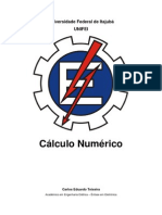 Teixeira - Métodos númericos em Matlab.pdf