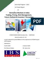 Intrim Report- Avinash Kumar Singh
