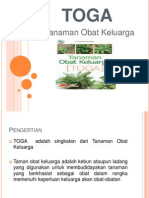 Tanaman Obat Keluarga (TOGA)