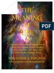 The True Meaning of Life by Periander A. Esplana