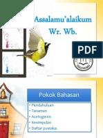 Slide Acetogenin Kel Farmakog
