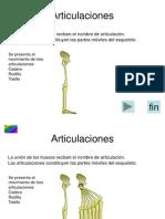 6_Articulaciones